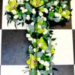 Lime orchid cross